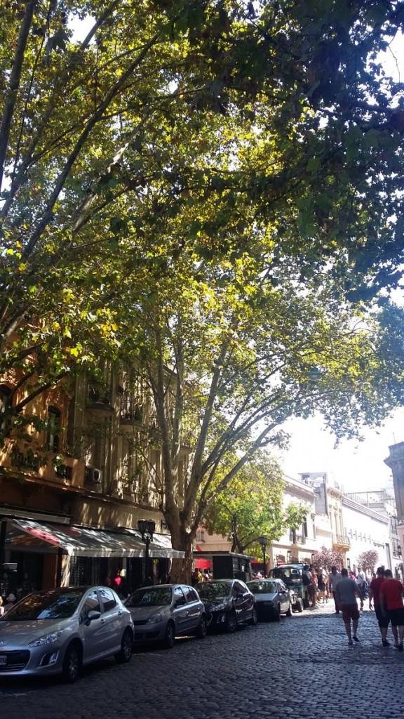 Bairro de San Telmo, Buenos Aires, Argentina.