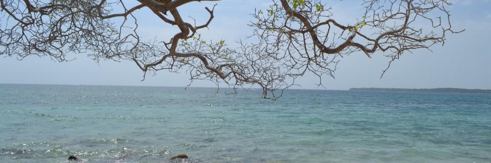 Isla Barú – Caribe